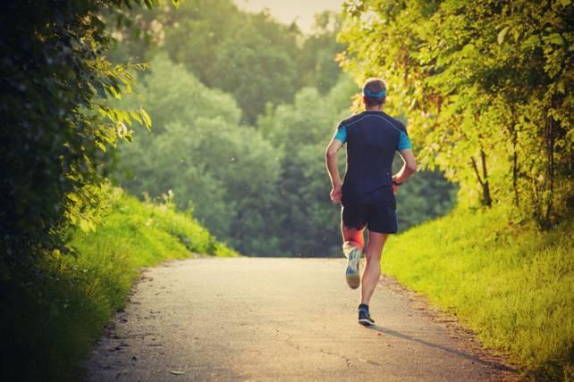профилактика и лечение холестериновых бляшек