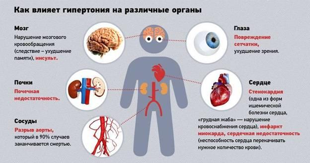 влияние гипертнезии на органы человека