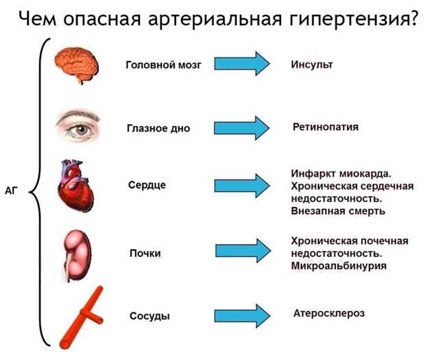 влияние артериальной гипертензии