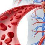 Что такое гипертензия: виды, симптомы и профилактика